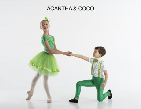 ACANTHA__COCO